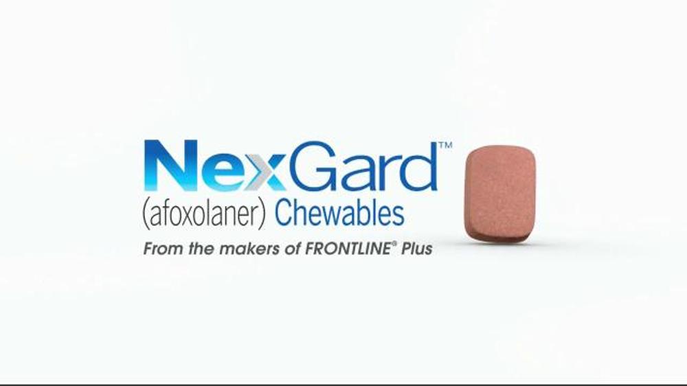 Nexgard Chewables Tv Commercial Ispot Tv