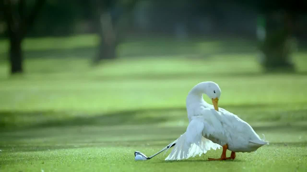 Aflac TV Spot, 'Bad Golfer' - Screenshot 4