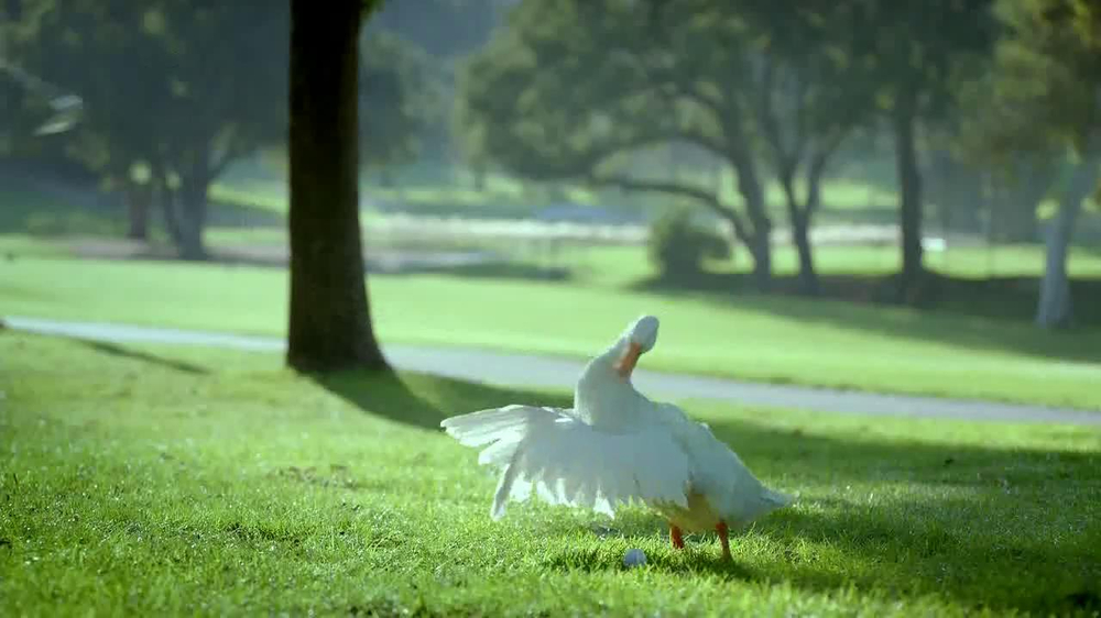Aflac TV Spot, 'Bad Golfer' - Screenshot 5