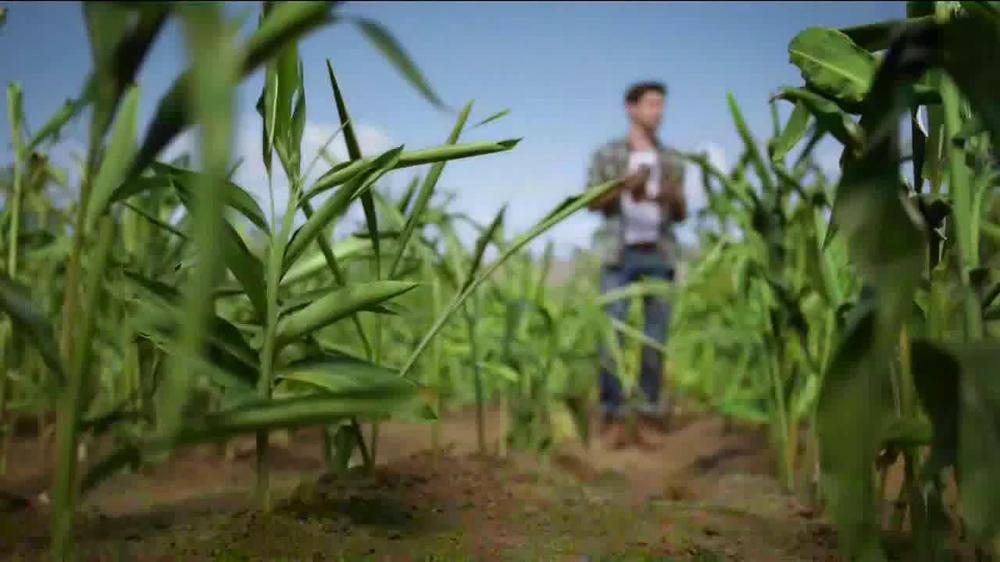 Canada dry tv spot jack s ginger farm screenshot 2