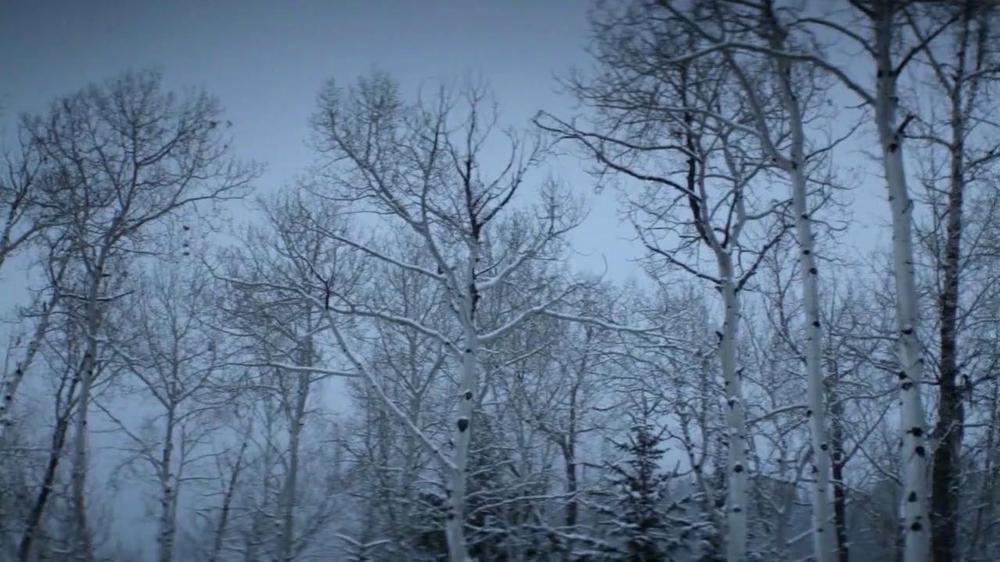 2014 Jeep Grand Cherokee TV Spot, 'Options' - Screenshot 1