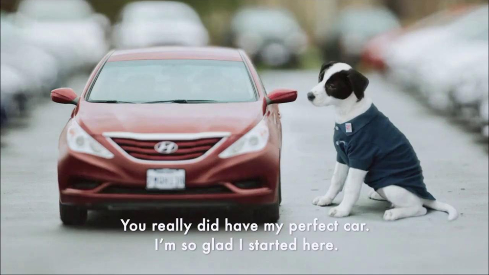 CarMax Super Bowl 2014 TV Spot, 'Slow Bark' Puppy Version - Screenshot 1