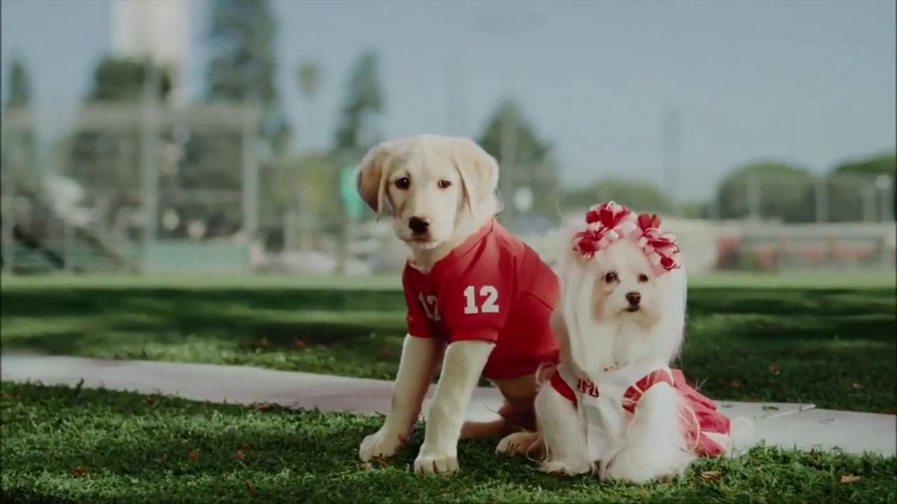 CarMax Super Bowl 2014 TV Spot, 'Slow Bark' Puppy Version - Screenshot 6