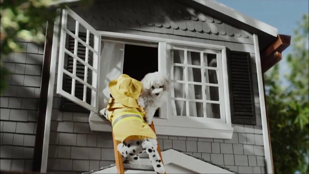 CarMax Super Bowl 2014 TV Spot, 'Slow Bark' Puppy Version - Screenshot 7