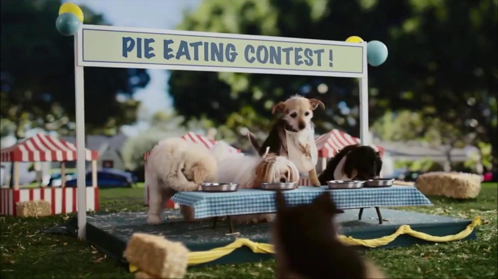 CarMax Super Bowl 2014 TV Spot, 'Slow Bark' Puppy Version - Screenshot 8