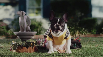 CarMax Super Bowl 2014 TV Spot, 'Slow Bark' Puppy Version - Thumbnail 10