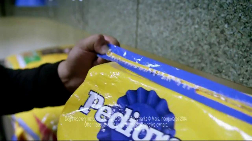 Pedigree TV Spot, 'Riley' - Screenshot 5