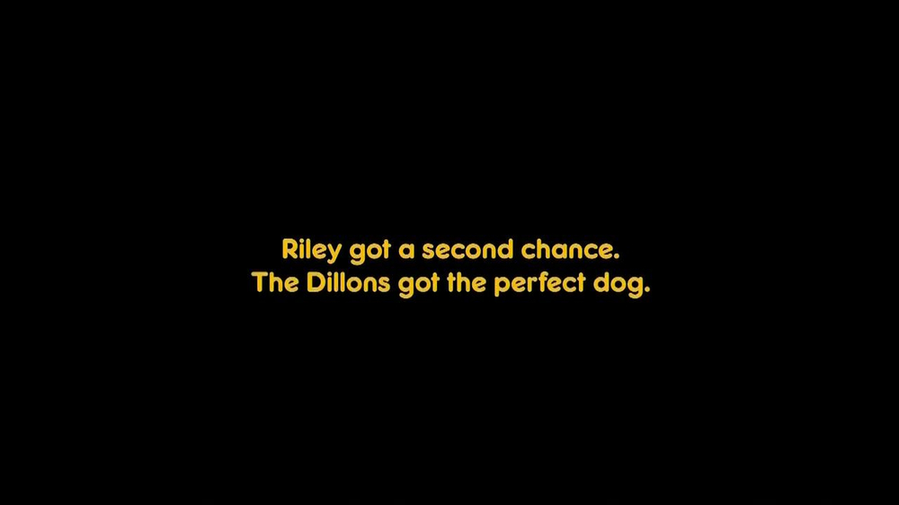 Pedigree TV Spot, 'Riley' - Screenshot 7