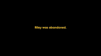 Pedigree TV Spot, 'Riley' - Thumbnail 2