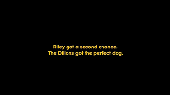 Pedigree TV Spot, 'Riley' - Thumbnail 7