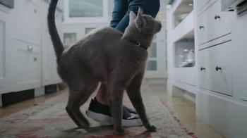 PetSmart TV Spot, 'Healthy Lifestyles' thumbnail