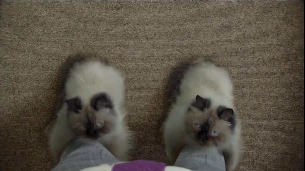 Temptations Cat Treats TV Spot, 'Cat Boots' - Screenshot 4