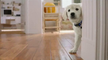 PetSmart TV Spot, 'Keep It Going Strong' thumbnail