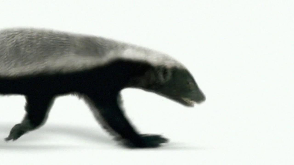 Wonderful Pistachios TV Spot 'Honey Badger' - Screenshot 1