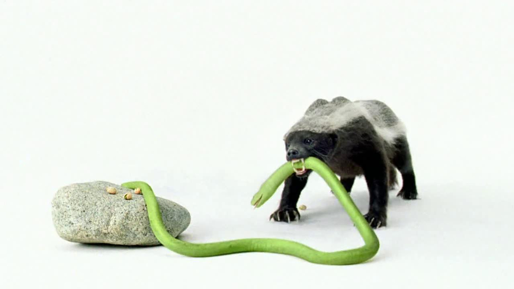 Wonderful Pistachios TV Spot 'Honey Badger' - Screenshot 7