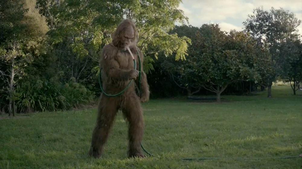 Jack Links Sasquatch FaceJack Links Sasquatch Face