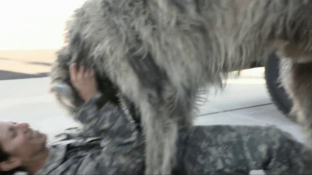 Iams Shakeables TV Spot, 'Rocky & a Soldier' - Screenshot 6