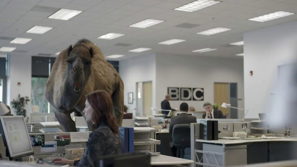 GEICO TV Spot, 'Camel on Hump Day' - Screenshot 4