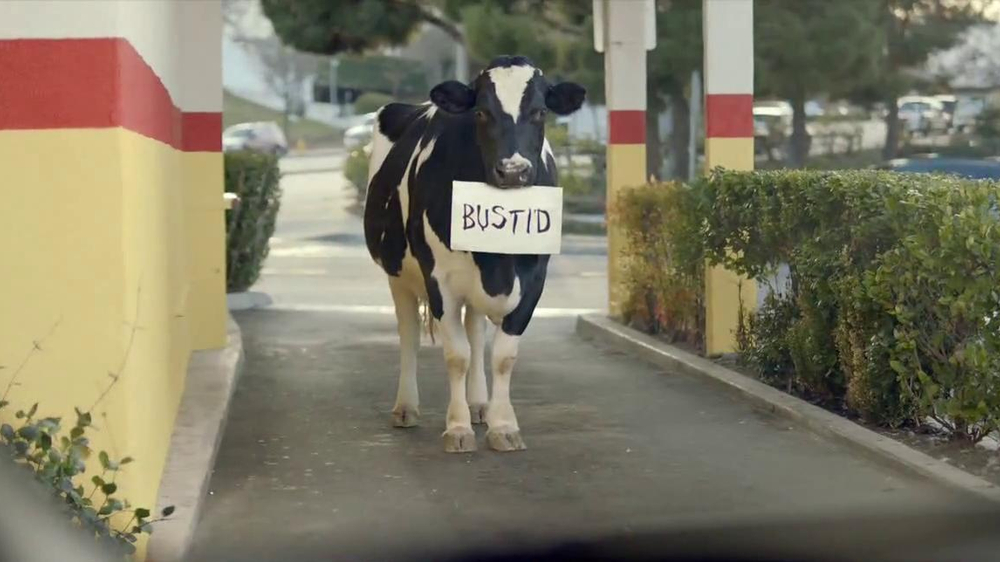 Chick-fil-A TV Spot, 'Bustid' - Screenshot 3