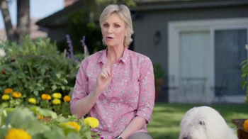 PetSmart TV Spot, 'Don't Mess With This Lady' Feat. Jane Lynch thumbnail