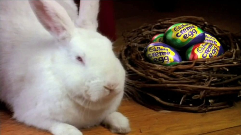 Cadbury TV Spot, 'Bunny Auditions' - Screenshot 4