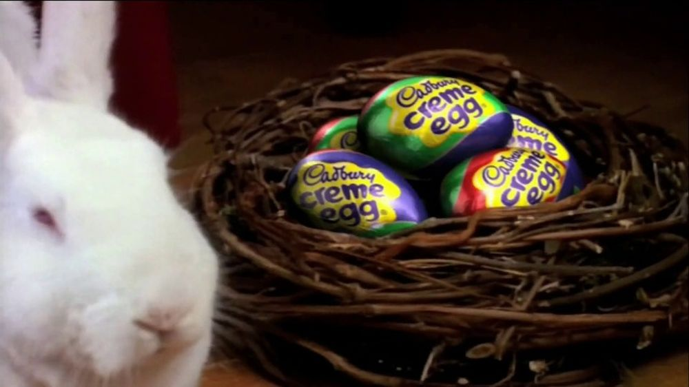 Cadbury TV Spot, 'Bunny Auditions' - Screenshot 5