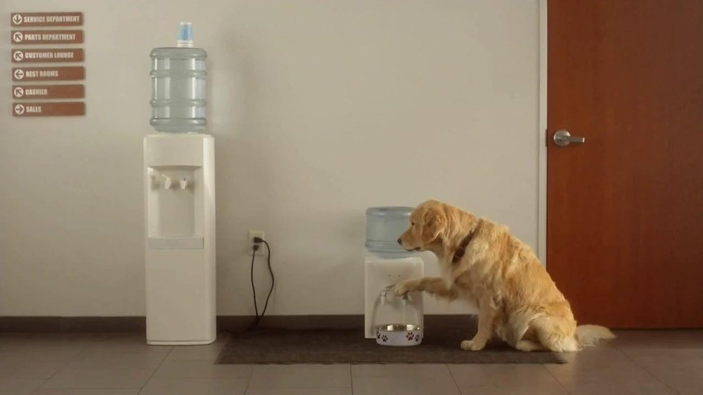 Subaru TV Spot 'Dog Tested, Dog Approved' - Screenshot 1