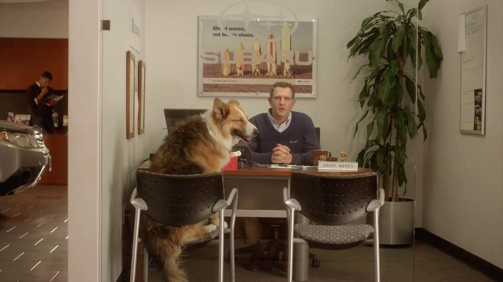 Subaru TV Spot 'Dog Tested, Dog Approved' - Screenshot 2