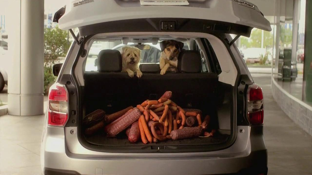 Subaru TV Spot 'Dog Tested, Dog Approved' - Screenshot 8