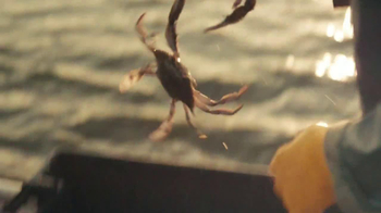 Joe's Crab Shack Spicy Citrus Steampot TV Spot