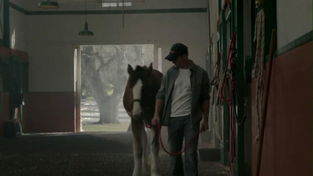 Budweiser 2013 Super Bowl TV Spot, 'Brotherhood' Song by Fleetwood Mac - Screenshot 2