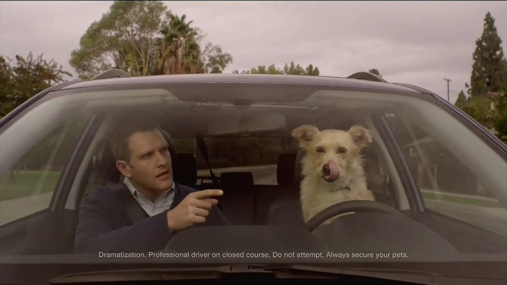 Subaru Dog Tested Subaru Commercial In The Dog House