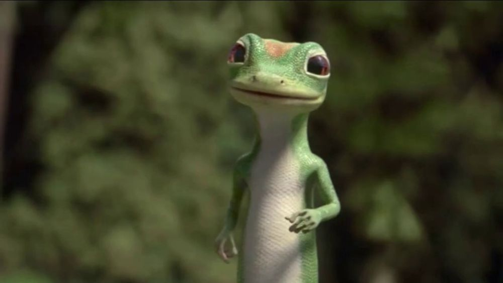 geico gecko images - Music Search - 26.2KB