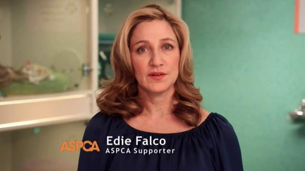 ASPCA TV Spot, 'Don't Turn Away' - 384 commercial airings