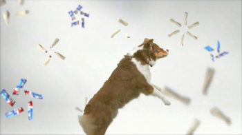 Purina Busy TV Spot, 'Get Busy' Song by George Clinton - 8543 commercial airings