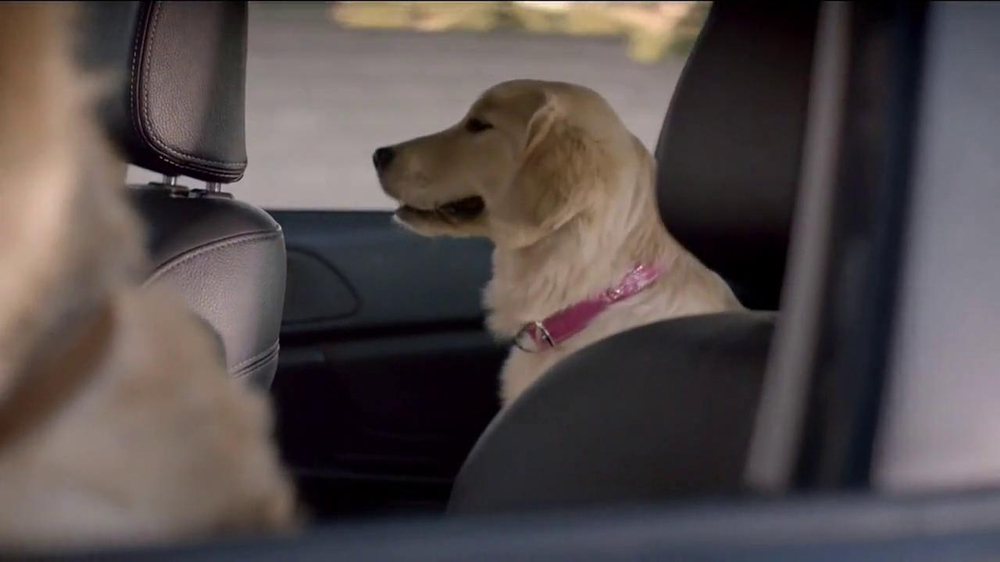 Subaru TV Spot, 'Dog Tested' - Screenshot 3