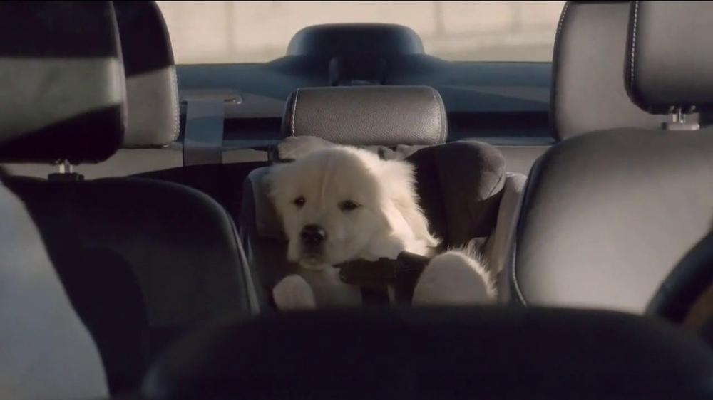 Subaru TV Spot, 'Dog Tested' - Screenshot 4