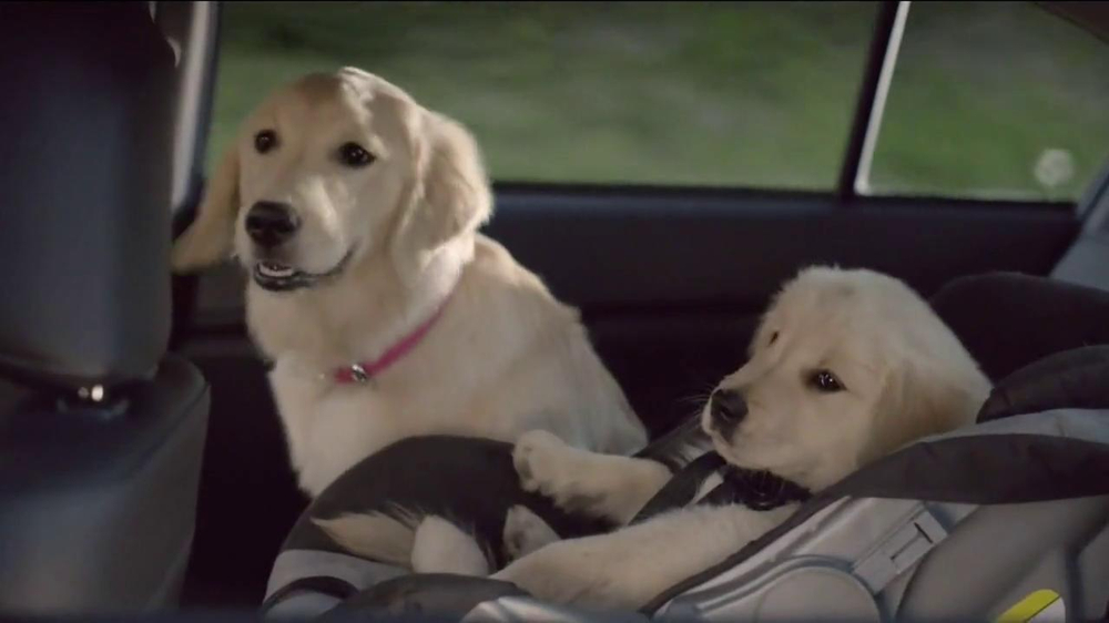 Subaru TV Spot, 'Dog Tested' - Screenshot 5