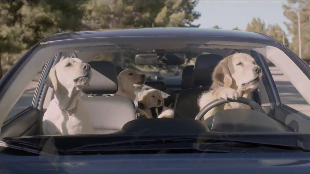 Subaru TV Spot, 'Dog Tested' - Screenshot 6
