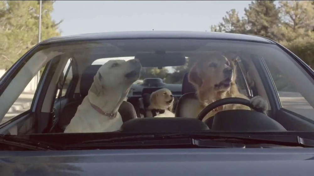 Subaru TV Spot, 'Dog Tested' - Screenshot 7