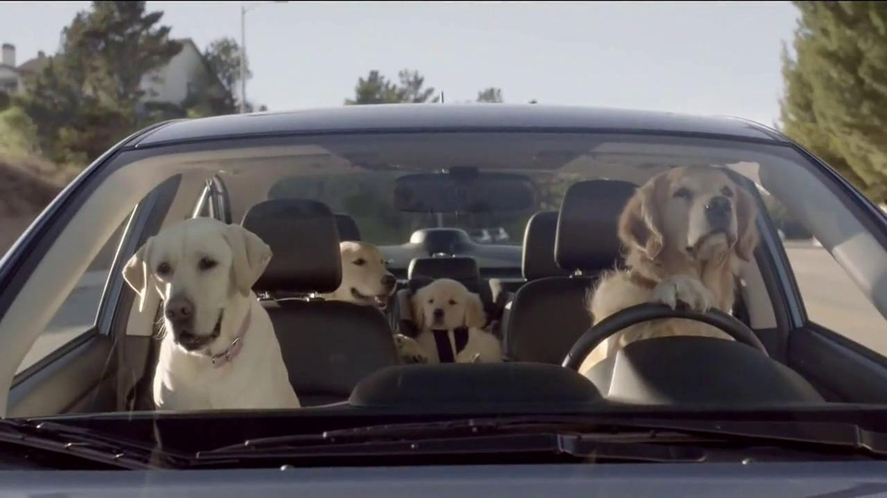 Subaru TV Spot, 'Dog Tested' - Screenshot 9