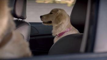 Subaru TV Spot, 'Dog Tested' - Thumbnail 3