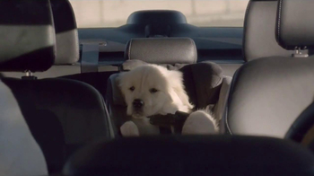 Subaru TV Spot, 'Dog Tested' - Thumbnail 4