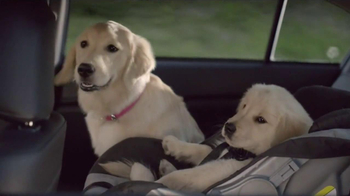 Subaru TV Spot, 'Dog Tested' - Thumbnail 5
