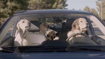 Subaru TV Spot, 'Dog Tested' - Thumbnail 6