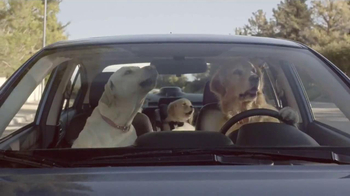 Subaru TV Spot, 'Dog Tested' - Thumbnail 7