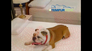 Mattress Discounters TV Spot - Thumbnail 2