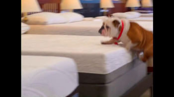 Mattress Discounters TV Spot - Thumbnail 3