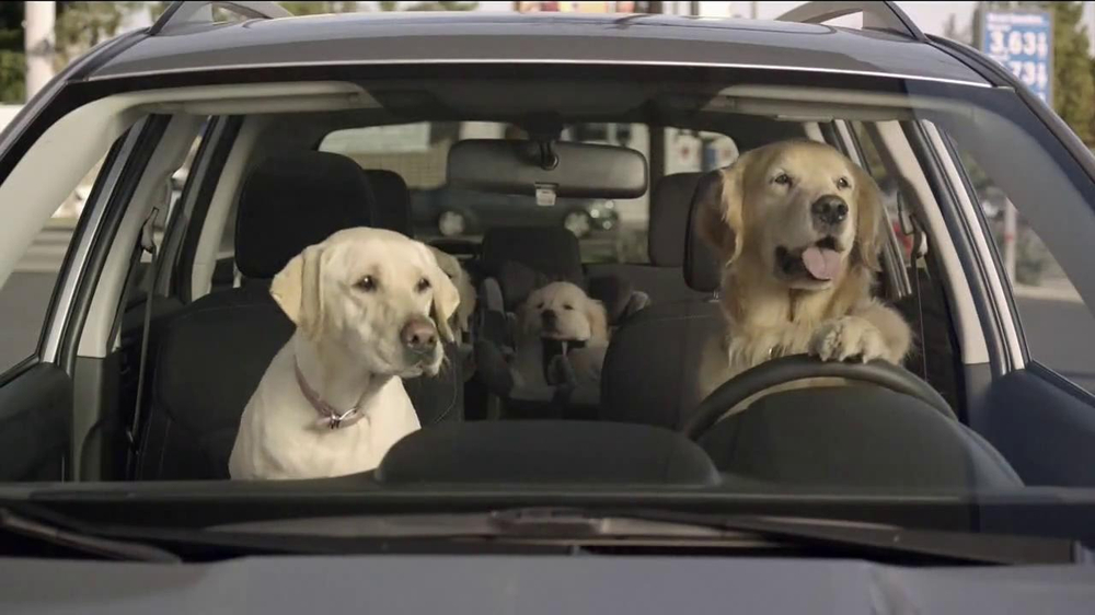 Subaru TV Spot, 'Dog Tested: Gas Station' - Screenshot 9