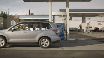 Subaru TV Spot, 'Dog Tested: Gas Station' - Thumbnail 10